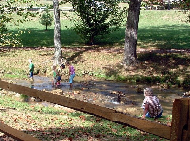 Mary Ward keeps a watchful eye on her grandchildren as they enjoyed playing in the creek.
